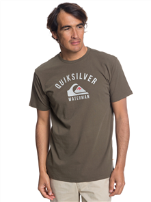 Quiksilver Established Short Sleeve Ii Tee, Ivy Green