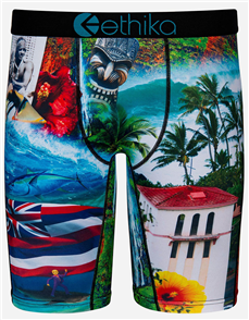 Ethika BOYS KOA HOMELAND STAPLE UNDERWEAR