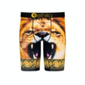 Ethika Boys Mighty Lion Staple Underwear