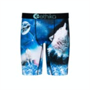 Ethika Boys Snow Cap Dog Staple Underwear